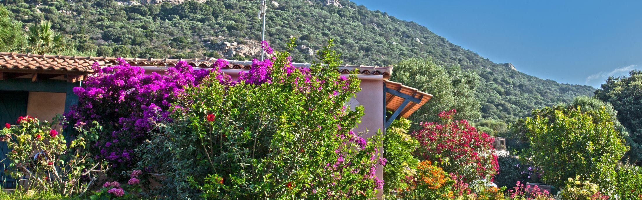 La Corse en automne : Ouverture des séjours à partir de deux nuitées !
